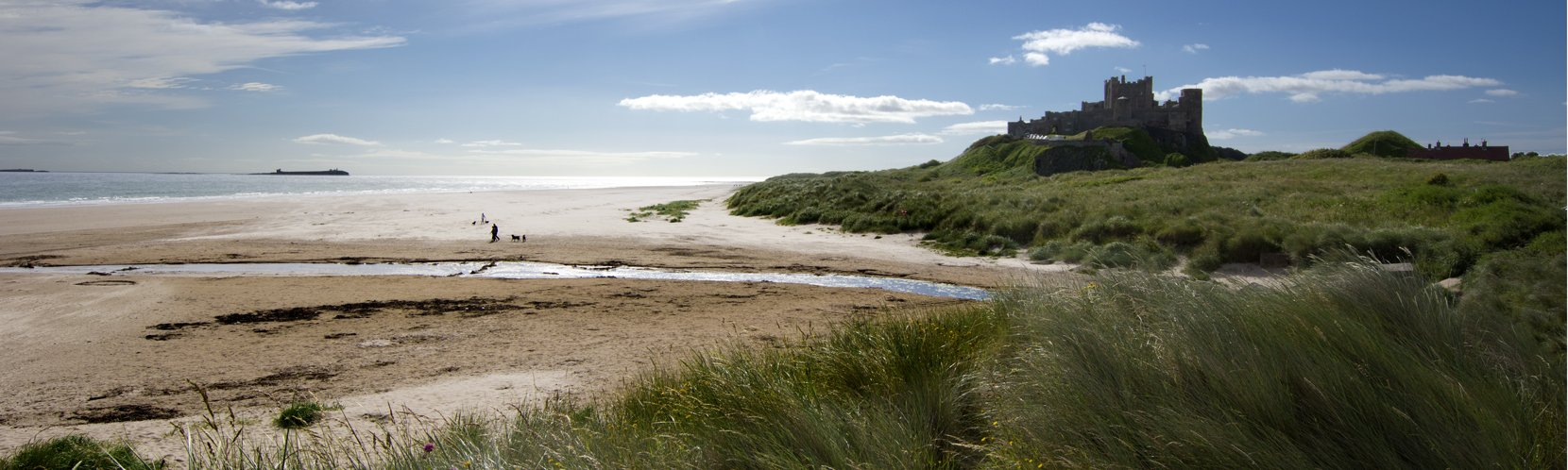 Sunny Bamburgh photo