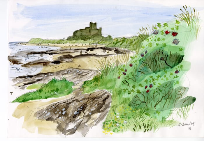 Bamburgh Castle sits in the distance with the beach to our left. One the right is a wild rose flowering profusely.