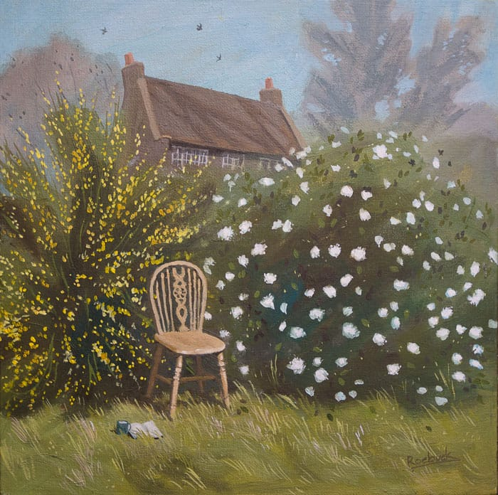 A curve backed wooden dining chair has been brought out into the sunshine among the flowering gorse and viburnum